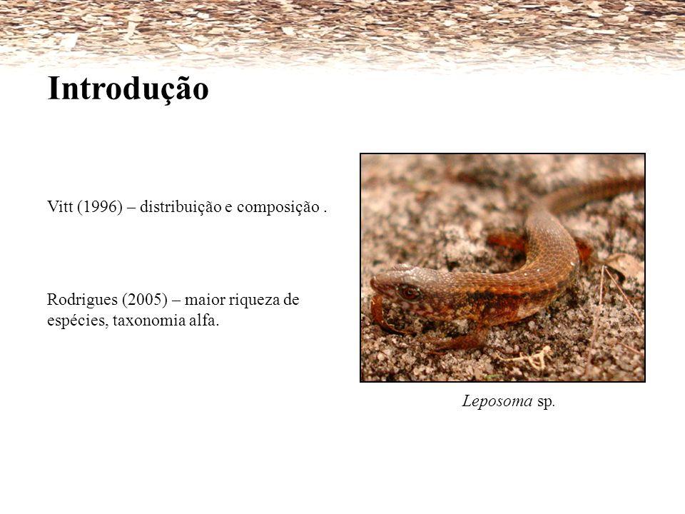 Vitt (1996) – distribuição e composição. Rodrigues (2005) – maior riqueza de espécies, taxonomia alfa. Leposoma sp. Introdução