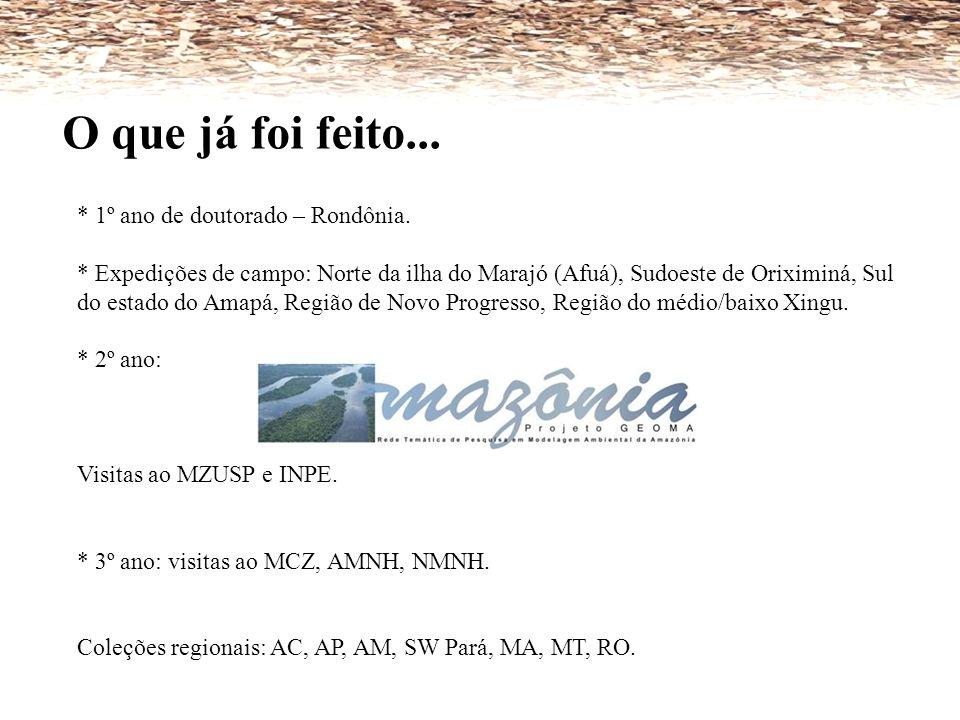 O que já foi feito... * 1º ano de doutorado – Rondônia. * Expedições de campo: Norte da ilha do Marajó (Afuá), Sudoeste de Oriximiná, Sul do estado do