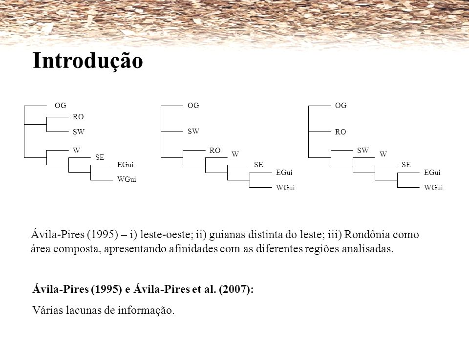 OG RO SW W SE EGui WGui SE OG RO SW W EGui WGui OG RO SW W SE EGui WGui Ávila-Pires (1995) – i) leste-oeste; ii) guianas distinta do leste; iii) Rondô