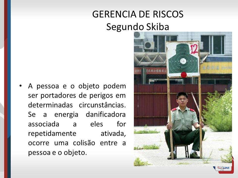 GERENCIA DE RISCOS Segundo Skiba A TEORIA DOS PORTADORES DE PERIGOS – Esta energia danificadora pode estar associada tanto à uma pessoa como a um obje