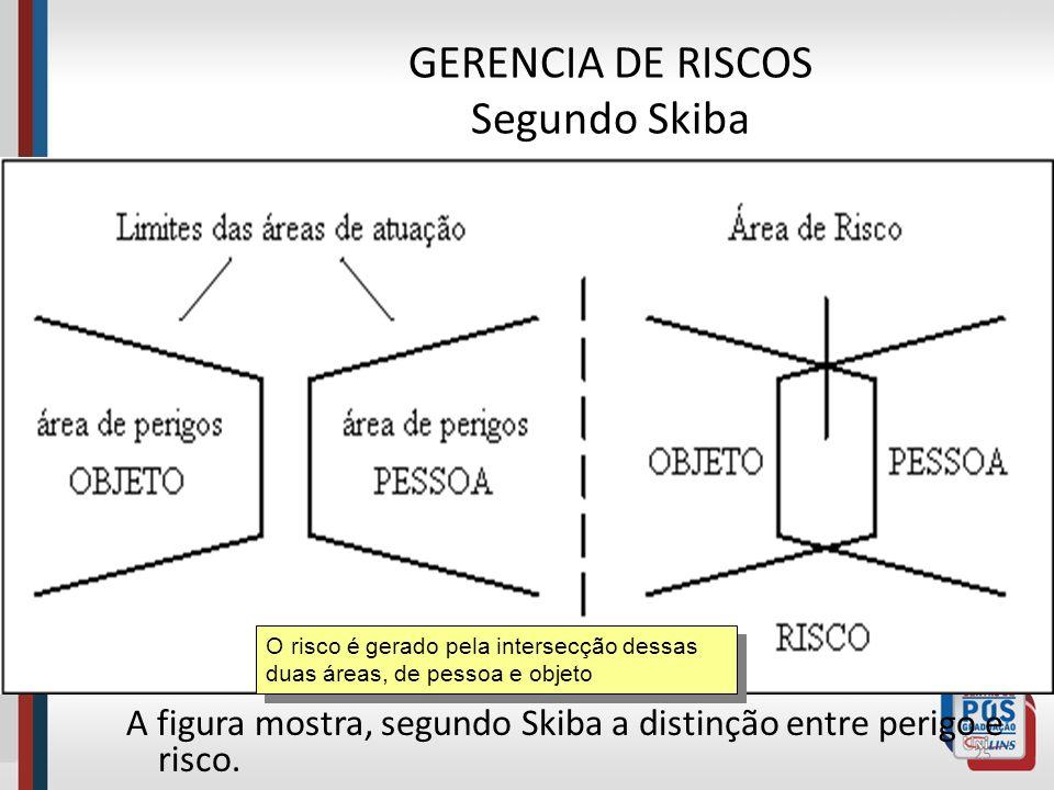 GERENCIA DE RISCOS Segundo Skiba A pessoa e o objeto podem ser portadores de perigos em determinadas circunstâncias. Se a energia danificadora associa