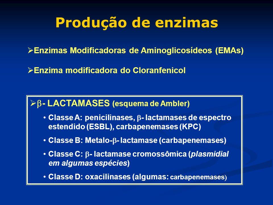 Produção de enzimas - LACTAMASES (esquema de Ambler) Classe A: penicilinases, - lactamases de espectro estendido (ESBL), carbapenemases (KPC) Classe B
