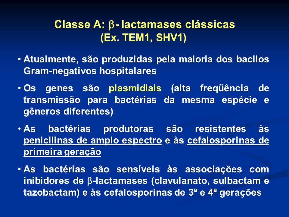 Classe A: - lactamases clássicas (Ex. TEM1, SHV1) Atualmente, são produzidas pela maioria dos bacilos Gram-negativos hospitalares Os genes são plasmid