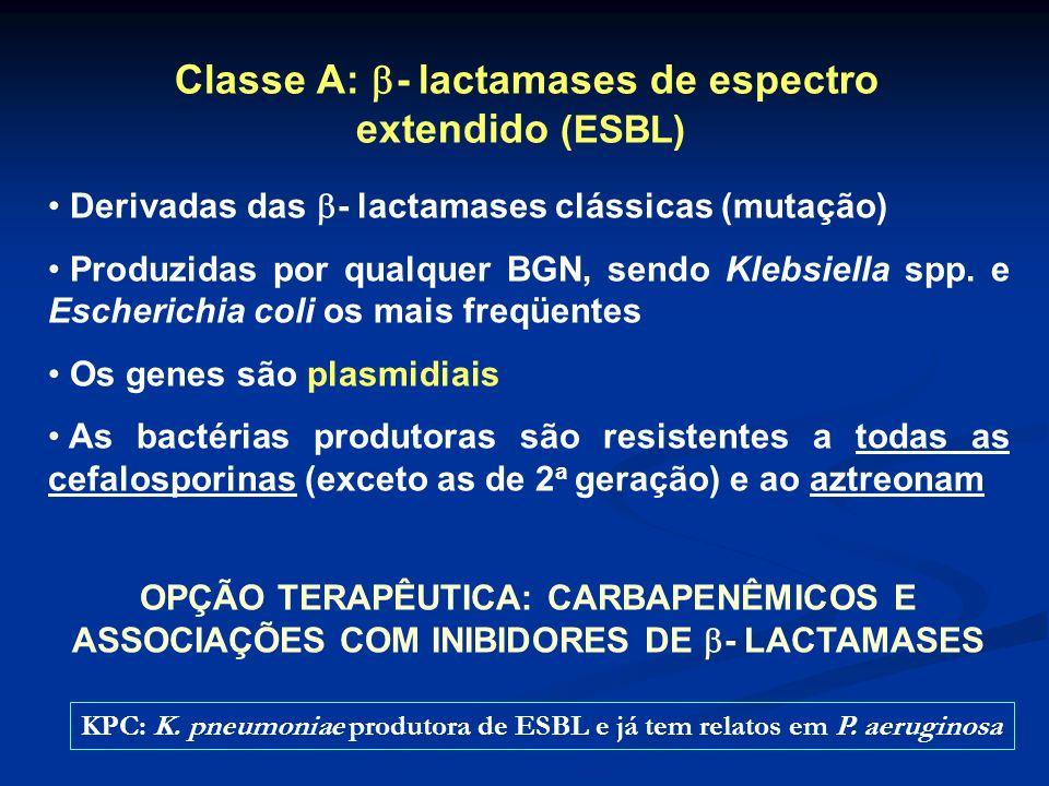 Classe A: - lactamases de espectro extendido (ESBL) Derivadas das - lactamases clássicas (mutação) Produzidas por qualquer BGN, sendo Klebsiella spp.
