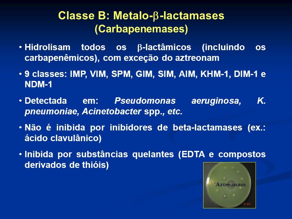 Classe B: Metalo- -lactamases (Carbapenemases) Hidrolisam todos os -lactâmicos (incluindo os carbapenêmicos), com exceção do aztreonam 9 classes: IMP,