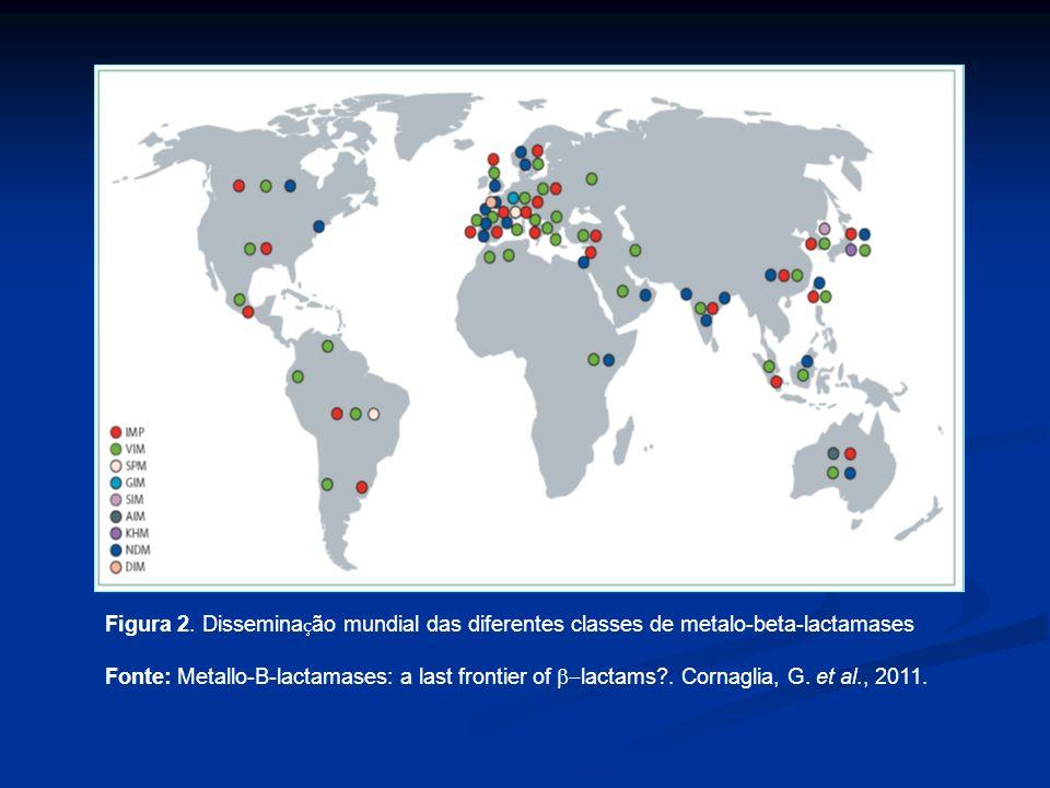 Figura 2. Dissemina ç ão mundial das diferentes classes de metalo-beta-lactamases Fonte: Metallo-B-lactamases: a last frontier of lactams?. Cornaglia,