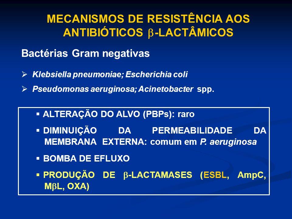 MECANISMOS DE RESISTÊNCIA AOS ANTIBIÓTICOS -LACTÂMICOS Bactérias Gram negativas Klebsiella pneumoniae; Escherichia coli Pseudomonas aeruginosa; Acinet