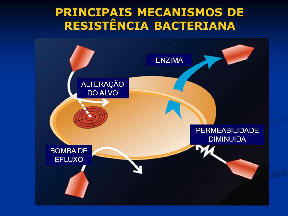 ENZIMA BOMBA DE EFLUXO PERMEABILIDADE DIMINUIDA ALTERAÇÃO DO ALVO PRINCIPAIS MECANISMOS DE RESISTÊNCIA BACTERIANA
