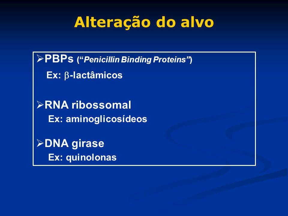 PBPs (Penicillin Binding Proteins) Ex: -lactâmicos RNA ribossomal Ex: aminoglicosídeos DNA girase Ex: quinolonas Alteração do alvo