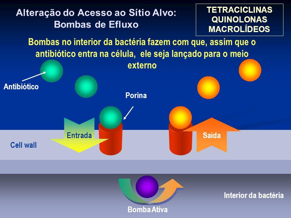 Alteração do Acesso ao Sítio Alvo: Bombas de Efluxo Interior da bactéria Cell wall Porina Antibiótico Entrada Saída Bomba Ativa Bombas no interior da