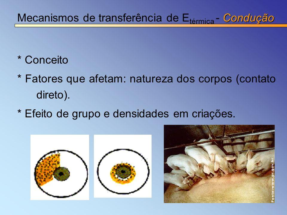 Condução Mecanismos de transferência de E térmica - Condução * Conceito * Fatores que afetam: natureza dos corpos (contato direto). * Efeito de grupo