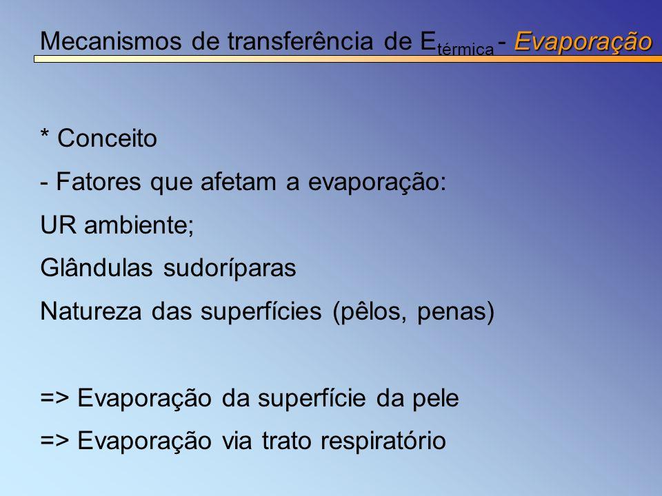 Evaporação Mecanismos de transferência de E térmica - Evaporação * Conceito - Fatores que afetam a evaporação: UR ambiente; Glândulas sudoríparas Natu