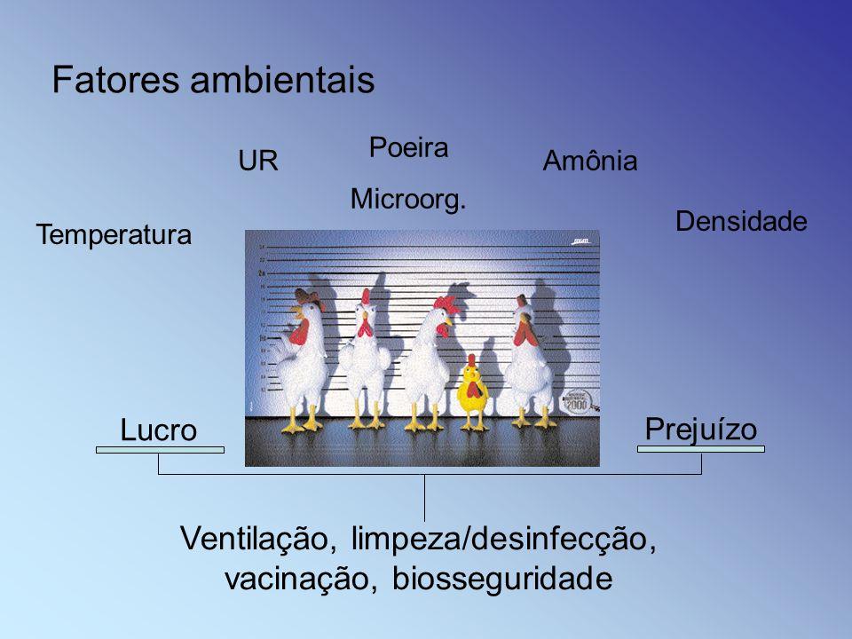 Fatores ambientais Ventilação, limpeza/desinfecção, vacinação, biosseguridade Temperatura UR Poeira Microorg. Amônia Densidade Lucro Prejuízo