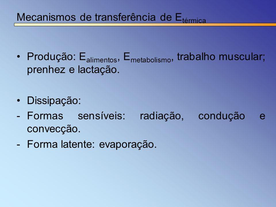 Mecanismos de transferência de E térmica Produção: E alimentos, E metabolismo, trabalho muscular; prenhez e lactação. Dissipação: -Formas sensíveis: r