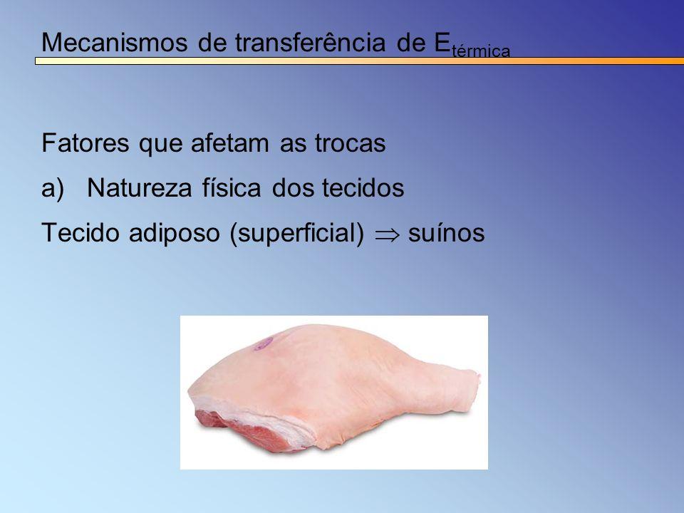 Mecanismos de transferência de E térmica Fatores que afetam as trocas a)Natureza física dos tecidos Tecido adiposo (superficial) suínos