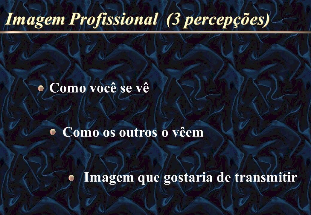 Imagem Profissional (3 percepções) Como você se vê Como os outros o vêem Imagem que gostaria de transmitir