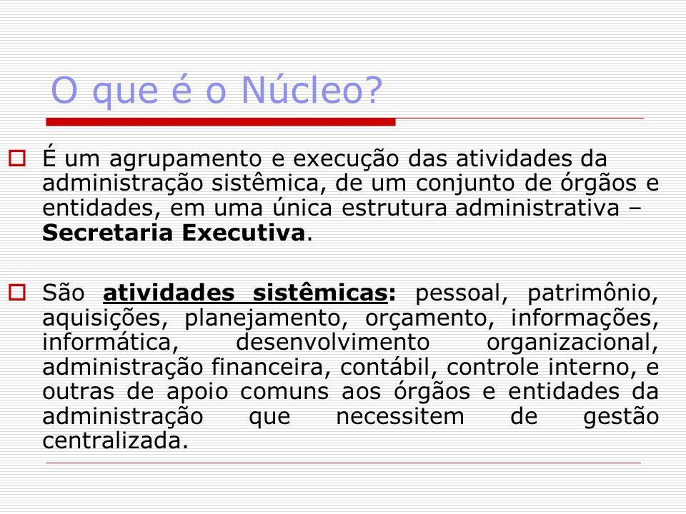 O que é o Núcleo? É um agrupamento e execução das atividades da administração sistêmica, de um conjunto de órgãos e entidades, em uma única estrutura