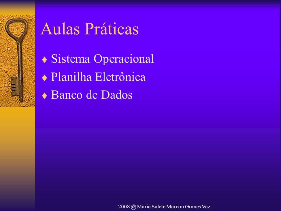 2008 @ Maria Salete Marcon Gomes Vaz Aulas Práticas Sistema Operacional Planilha Eletrônica Banco de Dados