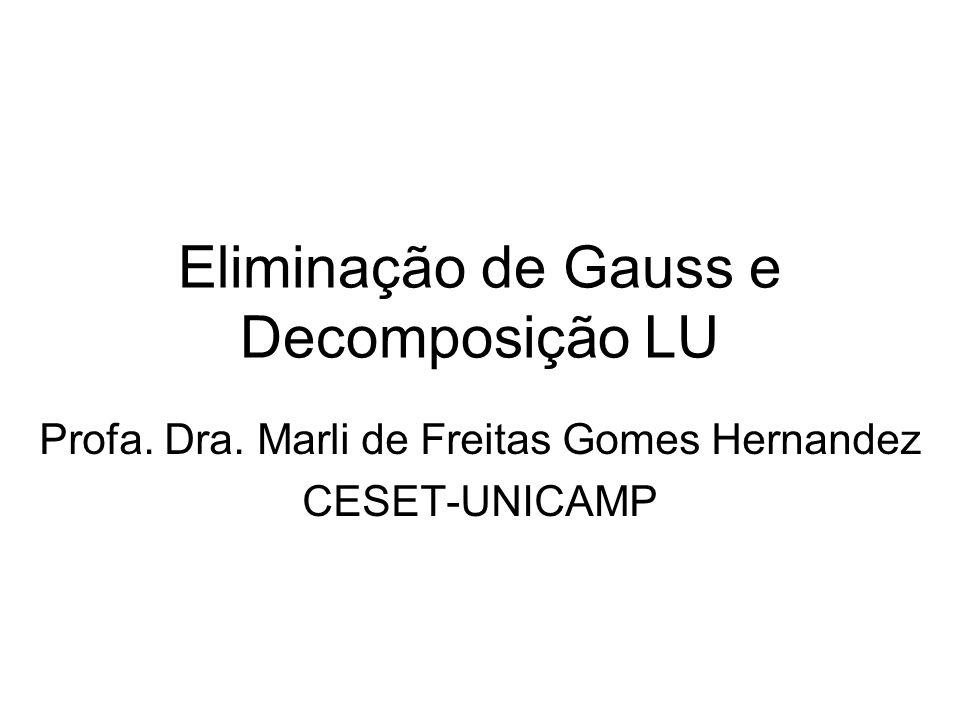 Eliminação de Gauss e Decomposição LU Profa. Dra. Marli de Freitas Gomes Hernandez CESET-UNICAMP
