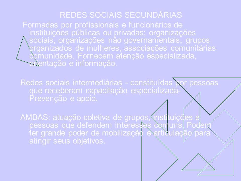REDES SOCIAIS SECUNDÁRIAS Formadas por profissionais e funcionários de instituições públicas ou privadas; organizações sociais, organizações não gover