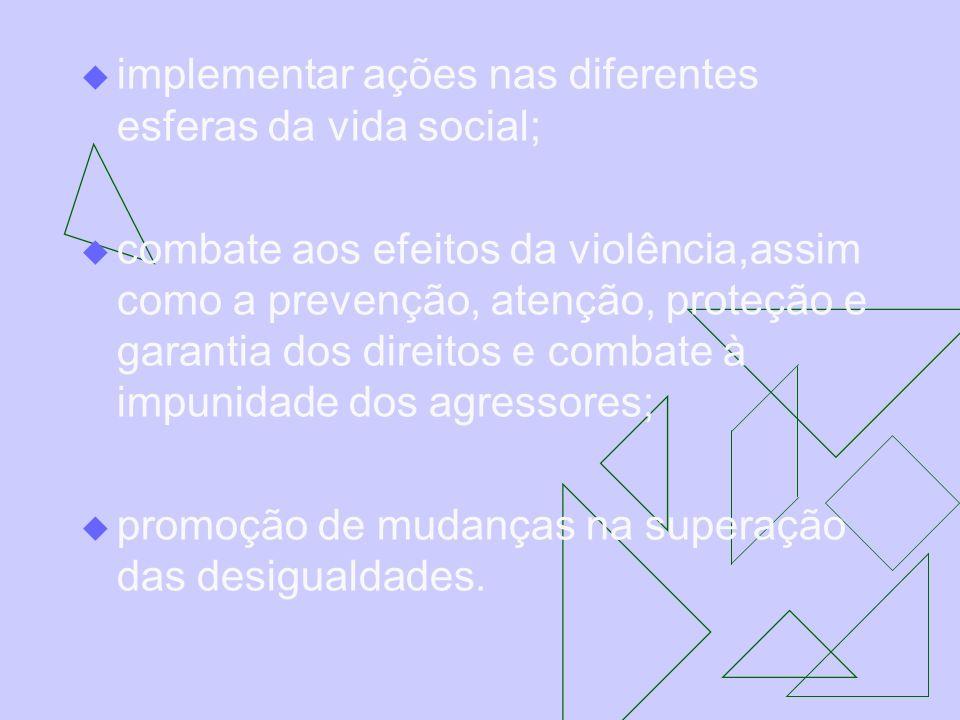 implementar ações nas diferentes esferas da vida social; combate aos efeitos da violência,assim como a prevenção, atenção, proteção e garantia dos dir