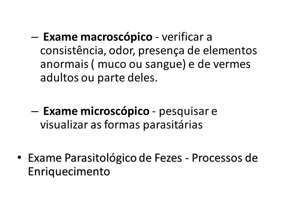 – Exame macroscópico - verificar a consistência, odor, presença de elementos anormais ( muco ou sangue) e de vermes adultos ou parte deles. – Exame mi