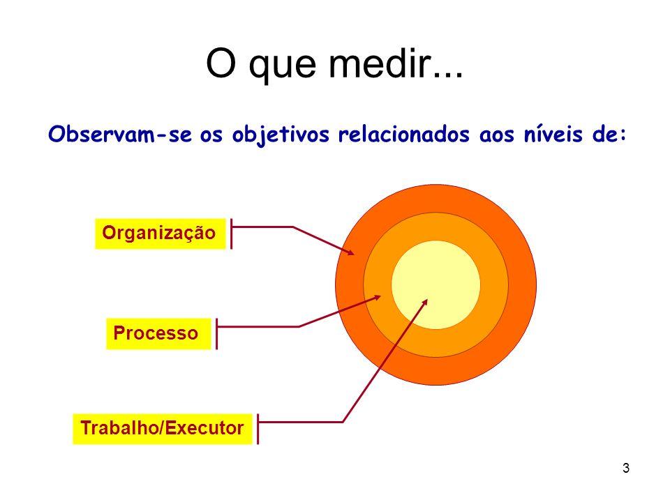 3 O que medir... Observam-se os objetivos relacionados aos níveis de: Organização Processo Trabalho/Executor
