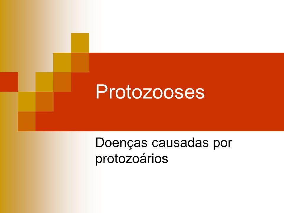 Protozooses Doenças causadas por protozoários