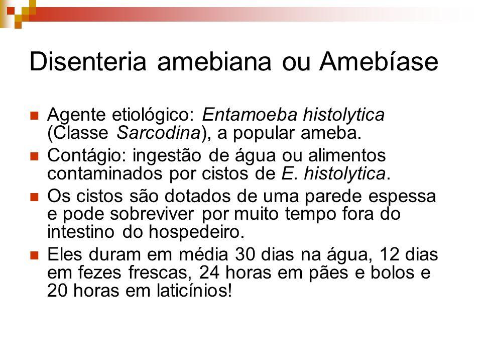 Disenteria amebiana ou Amebíase Agente etiológico: Entamoeba histolytica (Classe Sarcodina), a popular ameba. Contágio: ingestão de água ou alimentos