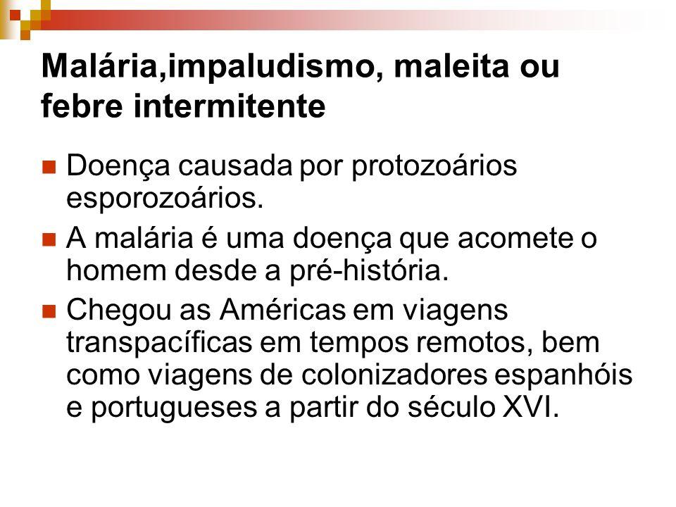 Malária,impaludismo, maleita ou febre intermitente Doença causada por protozoários esporozoários. A malária é uma doença que acomete o homem desde a p