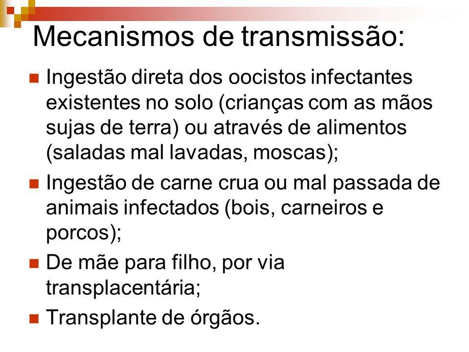 Mecanismos de transmissão: Ingestão direta dos oocistos infectantes existentes no solo (crianças com as mãos sujas de terra) ou através de alimentos (