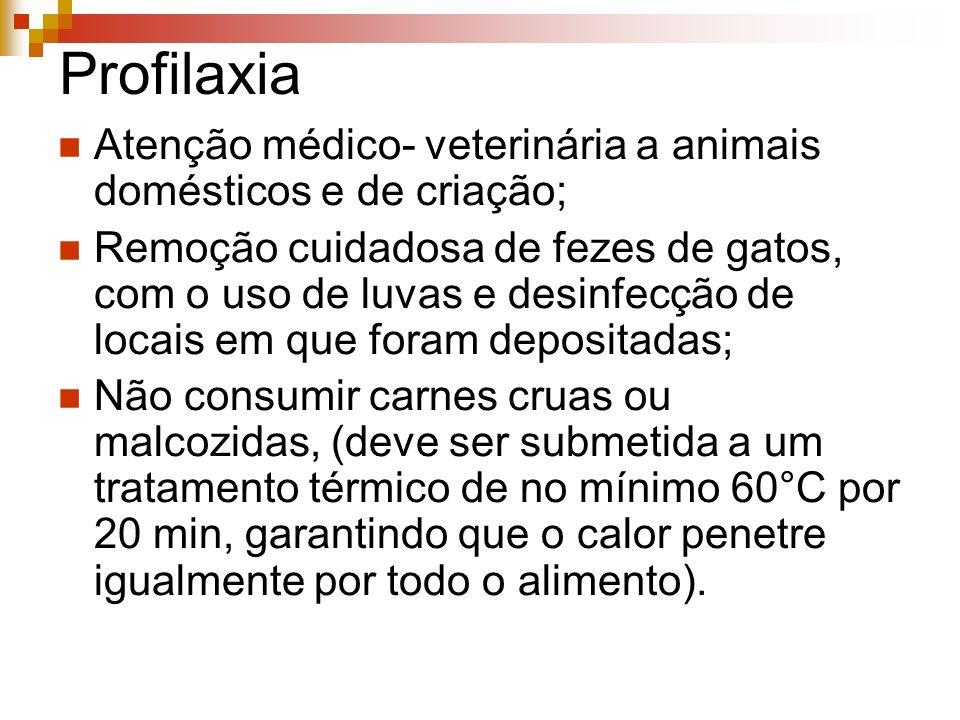 Profilaxia Atenção médico- veterinária a animais domésticos e de criação; Remoção cuidadosa de fezes de gatos, com o uso de luvas e desinfecção de loc