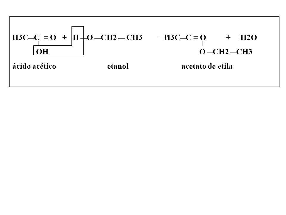 H3C C = O + H O CH2 CH3 H3C C = O + H2O OH O CH2 CH3 ácido acético etanol acetato de etila
