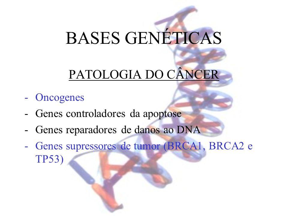 PATOLOGIA DO CÂNCER -Oncogenes -Genes controladores da apoptose -Genes reparadores de danos ao DNA -Genes supressores de tumor (BRCA1, BRCA2 e TP53)