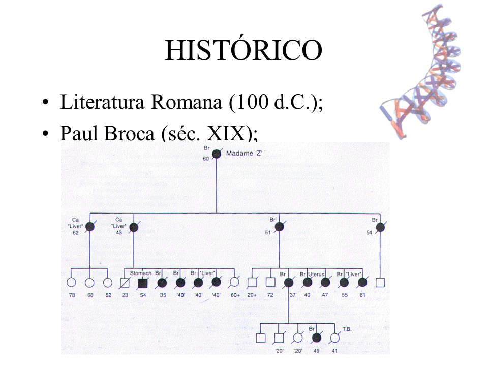HISTÓRICO Literatura Romana (100 d.C.); Paul Broca (séc. XIX);