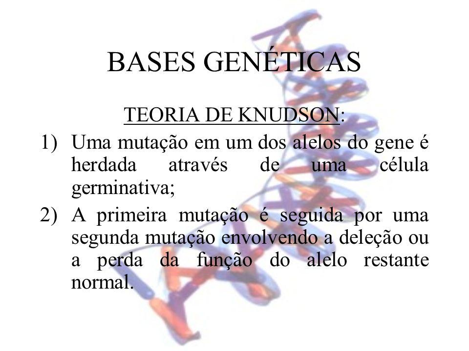 BASES GENÉTICAS TEORIA DE KNUDSON: 1)Uma mutação em um dos alelos do gene é herdada através de uma célula germinativa; 2)A primeira mutação é seguida