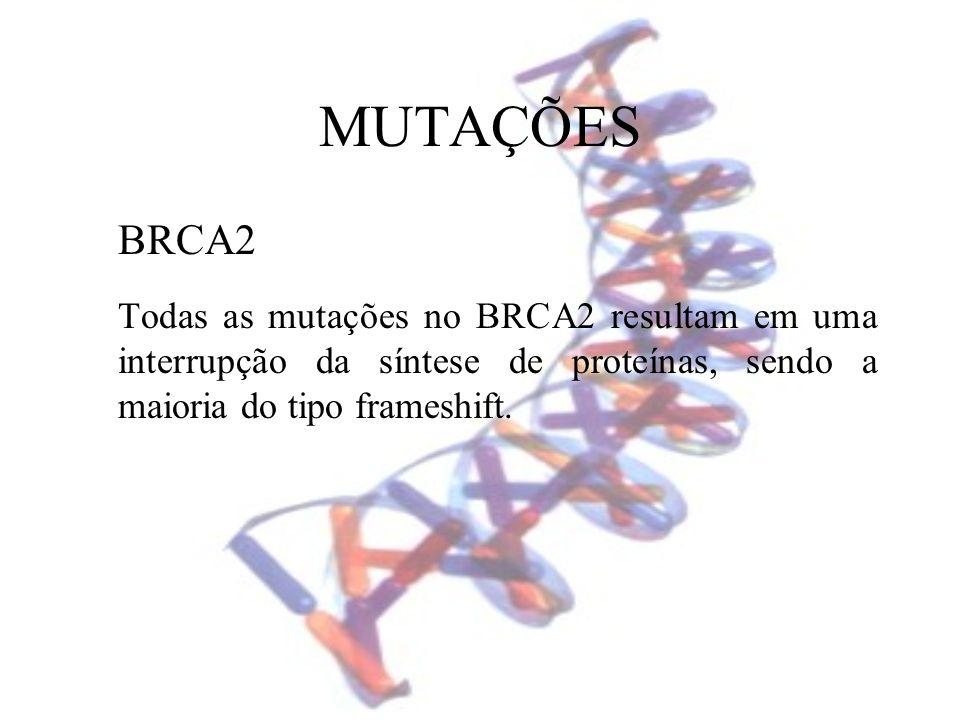 MUTAÇÕES BRCA2 Todas as mutações no BRCA2 resultam em uma interrupção da síntese de proteínas, sendo a maioria do tipo frameshift.
