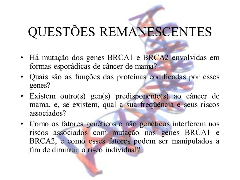 QUESTÕES REMANESCENTES Há mutação dos genes BRCA1 e BRCA2 envolvidas em formas esporádicas de câncer de mama? Quais são as funções das proteínas codif