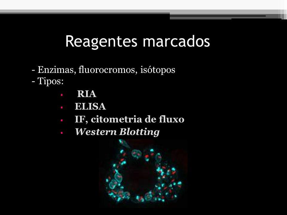 Reagentes marcados - Enzimas, fluorocromos, isótopos - Tipos: RIA ELISA IF, citometria de fluxo Western Blotting