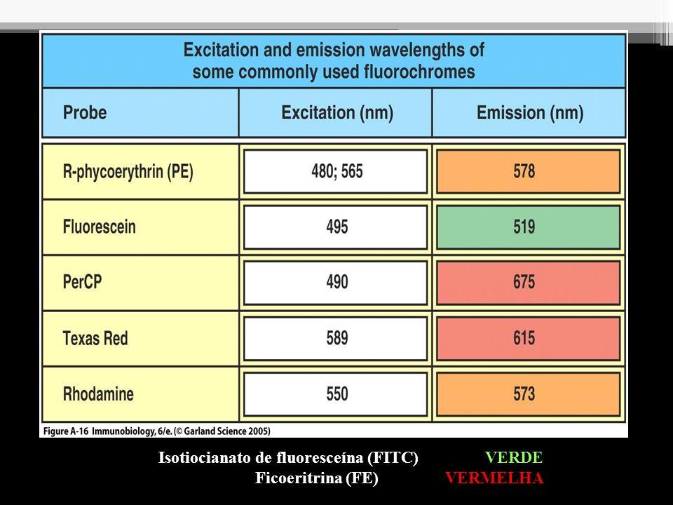 Imunofluorescência Direta Aplicações: - Detecção direta de microrganismos (secreções, urina, cortes de tecidos); - Identificação de subpopulações de linfócitos; - Fenotipagem de células tumorais Ex.: Detecção de Chlamydia trachomatis em secreção uretral