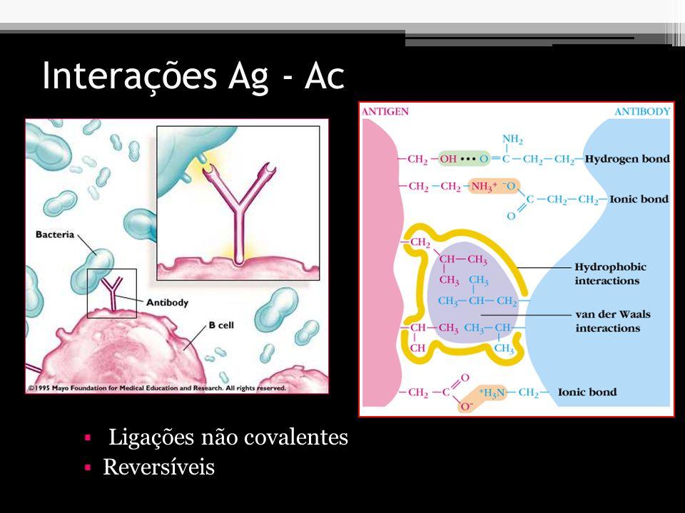 Características das interações Ag-Ac Afinidade Força de interação entre um único sítio de ligação Ag-Ac (em um único epítopo).