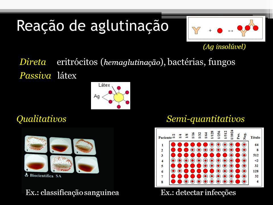 Reação de aglutinação Direta eritrócitos ( hemaglutinação ), bactérias, fungos Passiva látex (Ag insolúvel) QualitativosSemi-quantitativos Ex.: classi
