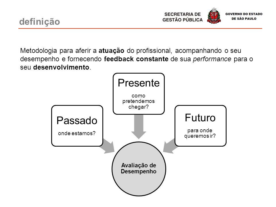 Metodologia para aferir a atuação do profissional, acompanhando o seu desempenho e fornecendo feedback constante de sua performance para o seu desenvo