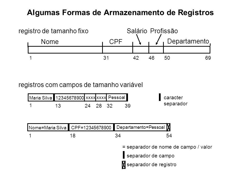 Algumas Formas de Armazenamento de Registros NomeCPF SalárioProfissão Departamento 13142465069 Maria Silva12345678900 xxxx Pessoal caracter separador