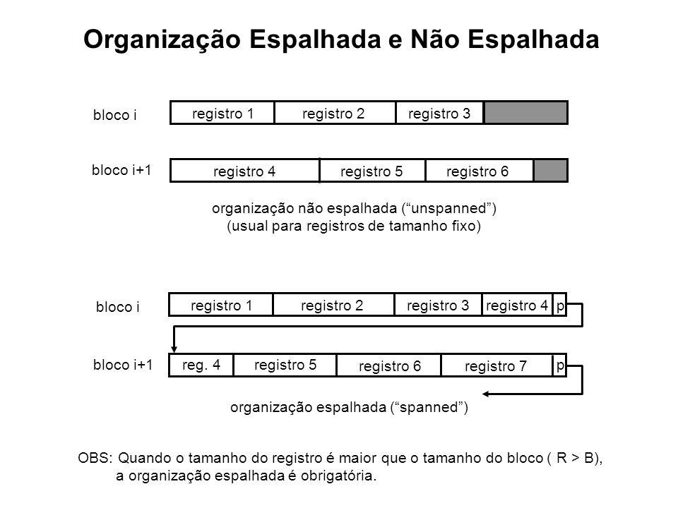 Organização Espalhada e Não Espalhada registro 1registro 2registro 3 registro 4registro 5registro 6 registro 1registro 2registro 3registro 4p reg. 4pr