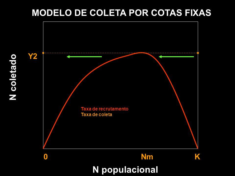 N populacional MODELO DE COLETA POR COTAS FIXAS Y1 Y2 Y3 0 Nm K Taxa de recrutamento Taxa de coleta N coletado