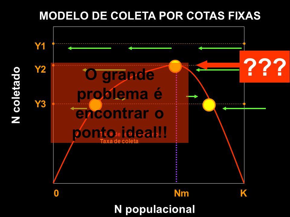 N populacional MODELO DE COLETA POR COTAS FIXAS Y1 Y2 Y3 0 Nm K Taxa de recrutamento Taxa de coleta N coletado ??? O grande problema é encontrar o pon