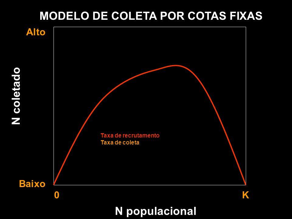 N populacional MODELO DE COLETA POR COTAS FIXAS Alto Baixo 0 K Taxa de recrutamento Taxa de coleta N coletado