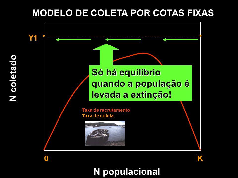 N populacional MODELO DE COLETA POR COTAS FIXAS Y1 0 K Taxa de recrutamento Taxa de coleta N coletado Só há equilíbrio quando a população é levada a e