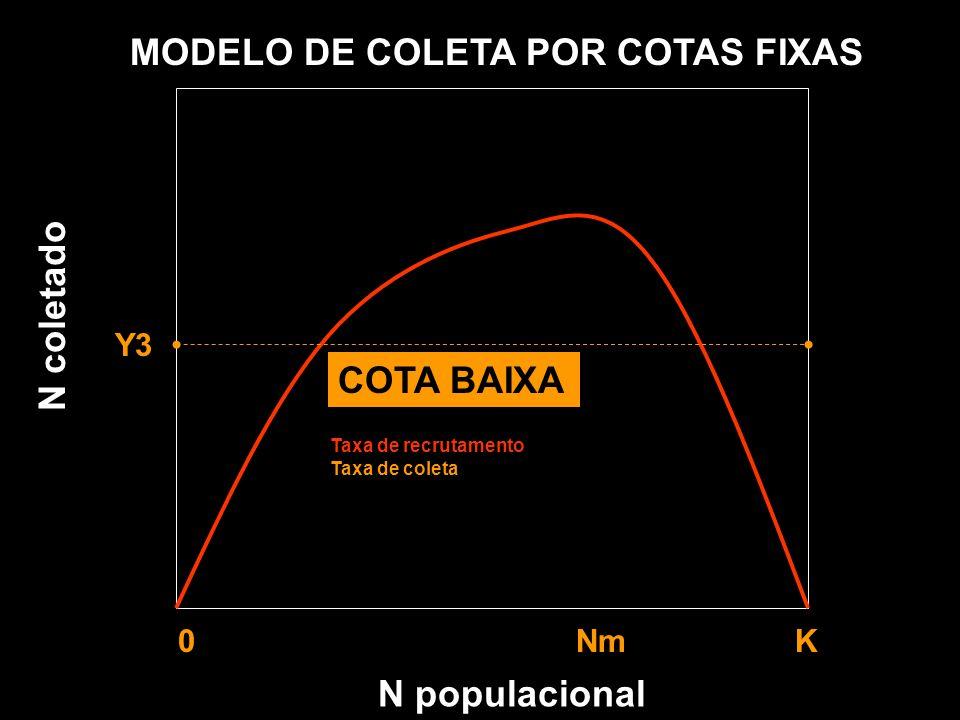 N populacional MODELO DE COLETA POR COTAS FIXAS Y1 Y2 Y3 0 Nm K Taxa de recrutamento Taxa de coleta N coletado COTA BAIXA